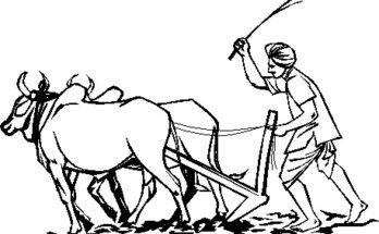 indian farmer life