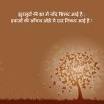 Night Hindi Poem